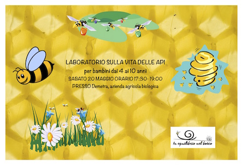 api piccolo